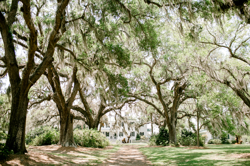 0002_Sarah and Dustin Cypress Trees Plantation Wedding {Jennings King Photography}