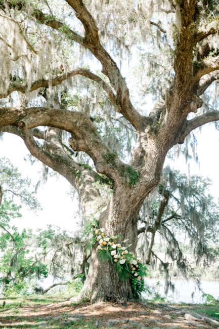 0071_Lucy & Trip Runnymede Plantation Wedding {Jennings King Photography}