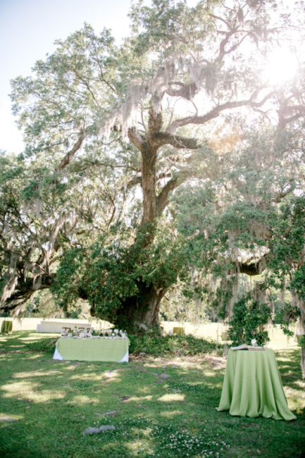 0122_Lucy & Trip Runnymede Plantation Wedding {Jennings King Photography}